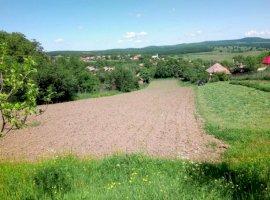 Vanzare  terenuri constructii  5000 mp Cluj, Vechea  - 51500 EURO