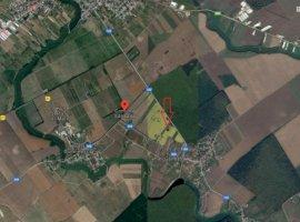 Vanzare  terenuri constructii  1000 mp Ilfov, Ganeasa  - 0 EURO