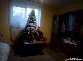 Vanzare  casa  2 camere Cluj, Tritenii-Hotar  - 169108 EURO