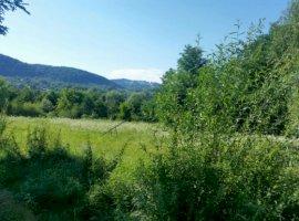 Vanzare  terenuri constructii  2000 mp Arges, Cerbureni  - 0 EURO