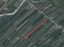Vanzare  terenuri constructii Suceava, Boroaia  - 0 EURO