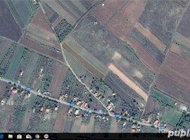 Vanzare  terenuri constructii  5800 mp Cluj, Pata  - 672800 EURO