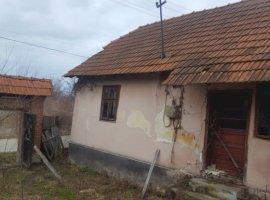 Vanzare  casa  3 camere Timis, Romanesti  - 9800 EURO