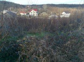 Vanzare  terenuri constructii Arges, Albota  - 20000 EURO