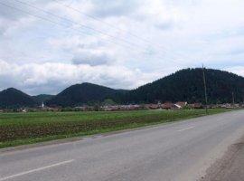 Vanzare  terenuri constructii  3620 mp Brasov, Rasnov  - 25 EURO