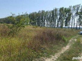 Vanzare  terenuri constructii  541 mp Ilfov, Silistea Snagovului  - 34000 EURO