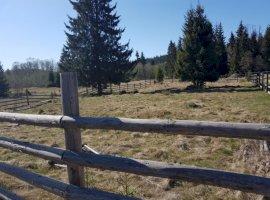 Vanzare  terenuri constructii Covasna, Comandau  - 17500 EURO