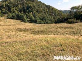 Vanzare  terenuri constructii  2000 mp Dambovita, Varfuri  - 1 EURO