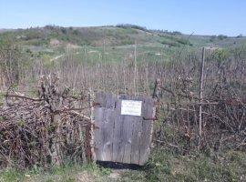 Vanzare  terenuri constructii Iasi, Vorovesti  - 20000 EURO