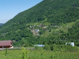 Vanzare  terenuri constructii  2500 mp Cluj, Muntele Rece  - 0 EURO
