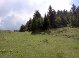 Vanzare  terenuri constructii Brasov, Fundata  - 0 EURO