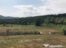 Vanzare  terenuri constructii  7000 mp Prahova, Drajna de Sus  - 63000 EURO