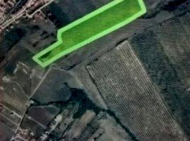 Vanzare  terenuri constructii  450 ha Sibiu, Sura Mare  - 0 EURO