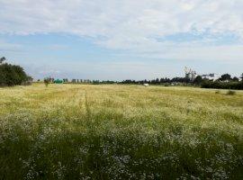 Vanzare  terenuri constructii Prahova, Floresti  - 45000 EURO