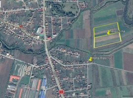 Inchiriere  terenuri agricol Cluj, Rascruci  - 0 EURO lunar