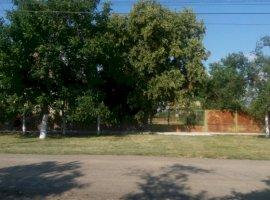 Vanzare  casa  3 camere Timis, Sanpetru Mare  - 18000 EURO