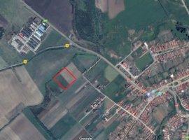 Vanzare  terenuri agricol Brasov, Feldioara  - 7 EURO