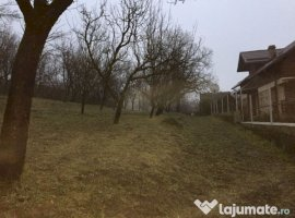 Vanzare  terenuri constructii  1800 mp Dambovita, Buciumeni  - 18000 EURO