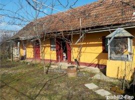 Vanzare  casa  2 camere Timis, Alios  - 15000 EURO