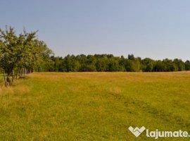 Vanzare  terenuri constructii  17.8 ha Valcea, Berislavesti  - 30000 EURO