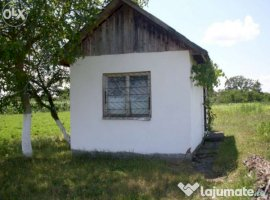 Vanzare  terenuri agricol  1500 mp Arad, Sepreus  - 3200 EURO