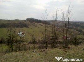 Vanzare  terenuri constructii  2576 mp Dolj, Leamna de Sus  - 10000 EURO
