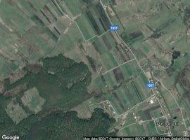 Vanzare  terenuri agricol  1300 mp Cluj, Popesti  - 0 EURO