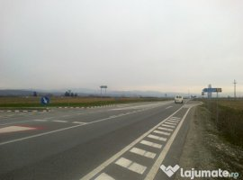 Vanzare  terenuri agricol  5500 mp Timis, Lugojel  - 16500 EURO