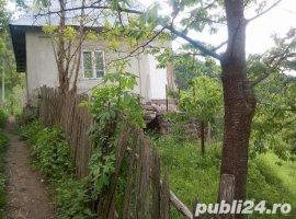 Vanzare  casa  6 camere Valcea, Olanesti  - 79000 EURO