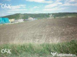 Vanzare  terenuri constructii  7000 mp Bacau, Slobozia (Onesti)  - 35000 EURO