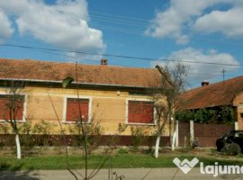 Vanzare  casa  5 camere Timis, Ohaba-Forgaci  - 40000 EURO