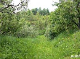 Vanzare  terenuri constructii  20 ha Dambovita, Gura Barbuletului  - 0 EURO