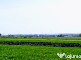 Vanzare  terenuri constructii  4600 mp Dolj, Simnicu de Jos  - 0 EURO