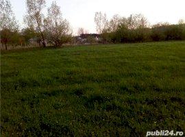 Vanzare  terenuri constructii  3900 mp Suceava, Radaseni  - 152100 EURO