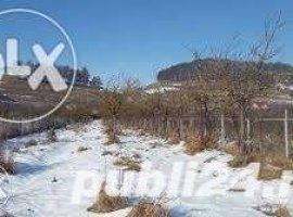 Vanzare  terenuri constructii  7800 mp Brasov, Sanpetru  - 0 EURO