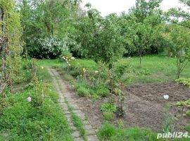 Vanzare  casa  3 camere Sibiu, Agnita  - 42000 EURO