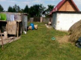 Vanzare  casa  2 camere Brasov, Budila  - 10000 EURO