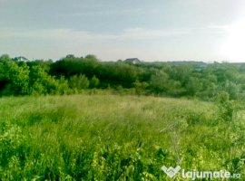 Vanzare  terenuri constructii  8300 mp Ilfov, Balteni  - 23650 EURO