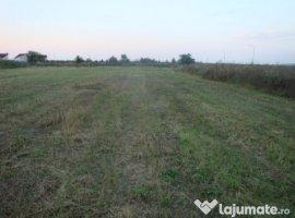 Inchiriere  terenuri constructii  1500 mp Sibiu, Sura Mica  - 0 EURO lunar