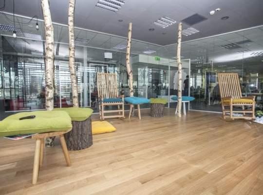 Un oras in oras: sediul fascinant al Betfair Romania, locul in care la sedinte stai pe trunchiuri de copac